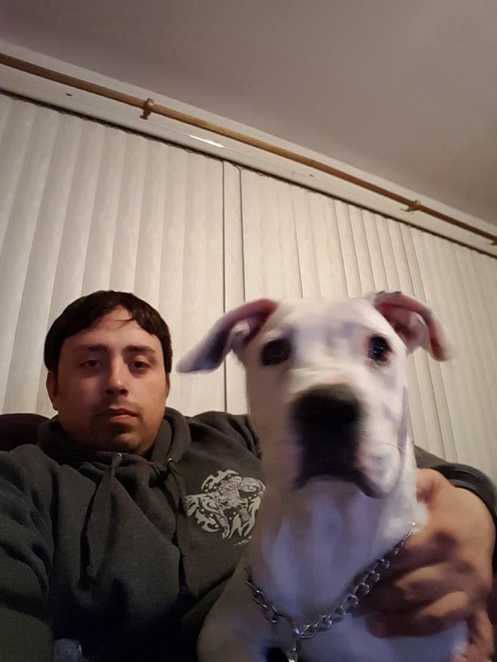 Dutchess County NY Dog Trainer